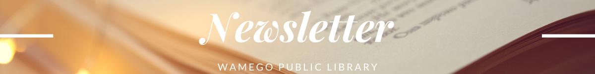 newsletter website banner