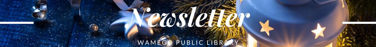 Newsletter Christmas Web Banner